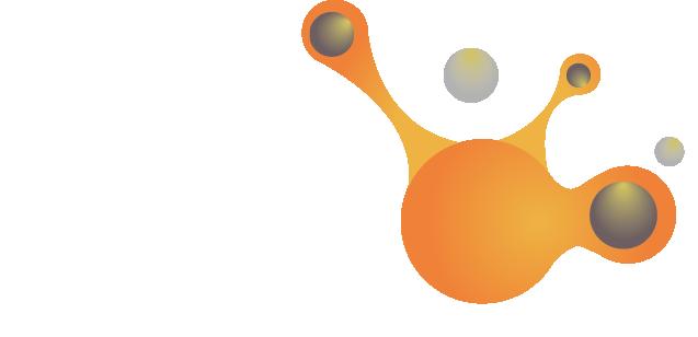 Réseau professionnel Entreprendre au Féminin Océan Indien Réunion – Efoir 974